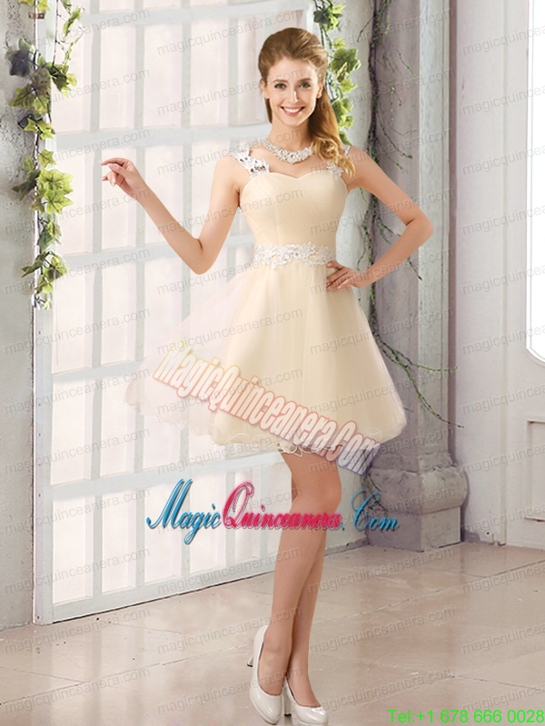 2015 Decent Straps Appliques Mother Dress for Quinceanera with Mini Length