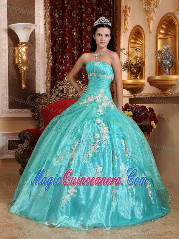 Appliques Accent Organza Quinceanera Gown Dresses in Apple Green ...