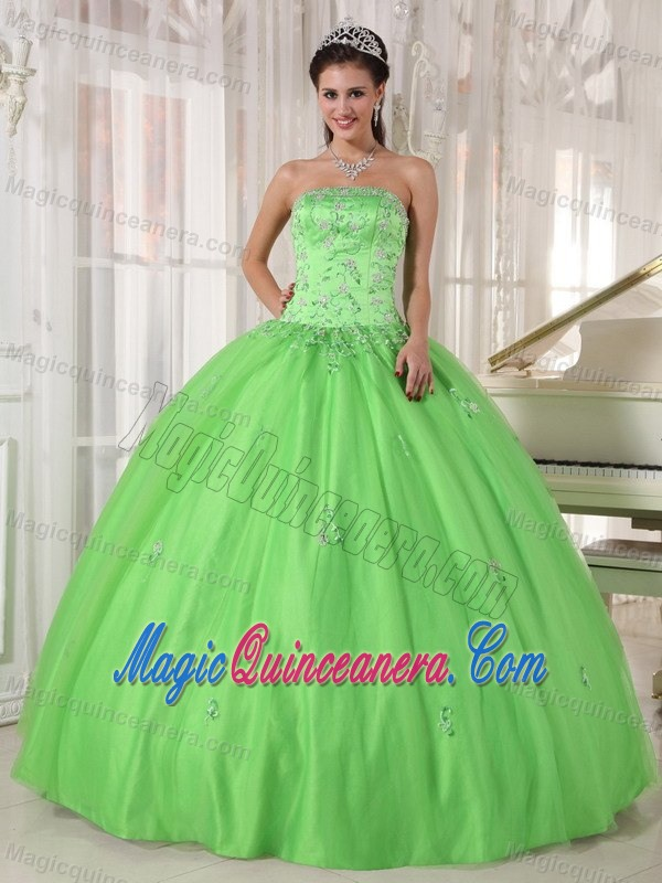 Monterrey Mexico Applique Spring Green Tulle Sweet 15 Dresses ...