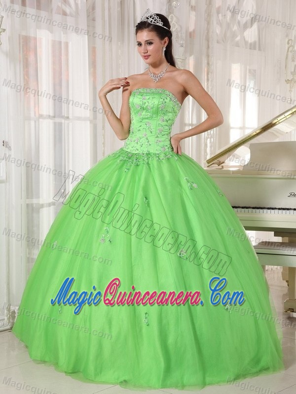 524c8a3128a Monterrey Mexico Applique Spring Green Tulle Sweet 15 Dresses -  219.69
