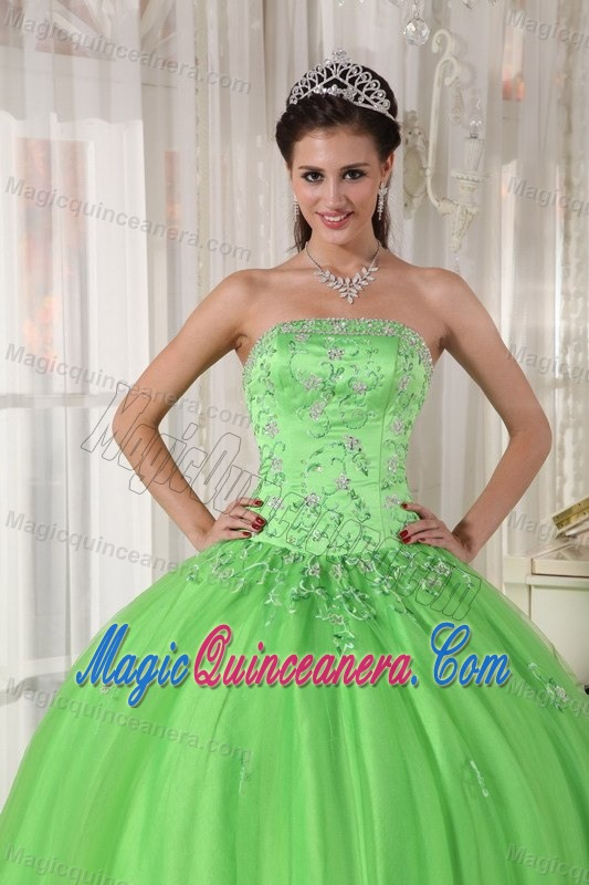 7fe2101a6b9 Monterrey Mexico Applique Spring Green Tulle Sweet 15 Dresses ...