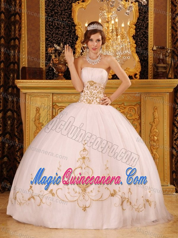 Unique Vintage Looking Quinceanera Dresses 2014 on Sale