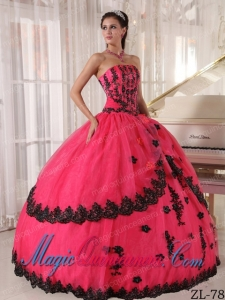 Luxurious Ball Gown Strapless Quinceanera Dress with Appliques