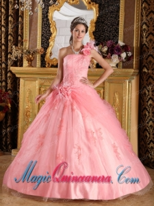 Watermelon Ball Gown One Shoulder Elegant Appliques Tulle Quinceanera Dress