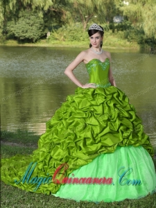 Appliques and Pick-ups Spring Green Brush Train Exquisite Style For 2013 Fashion Quinceanera Dress