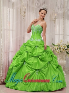 Ball Gown Sweetheart Floor-length Taffeta Appliques Fashion Quinceanera Dress in Spring Green
