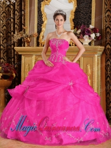Hot Pink Ball Gown Strapless Floor-length Organza Appliques New style Quinceanera Dress