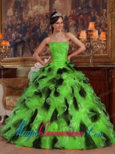 Green and Black Ball Gown Strapless Floor-length Organza Quinceanera Dress
