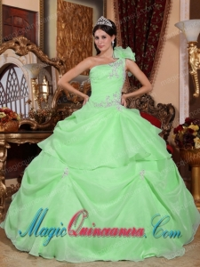 Ball Gown One Shoulder Vintage Organza Appliques Sweet 16 Gowns in Green