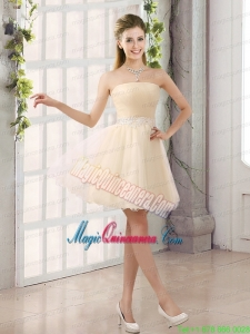 2015 Appliques Strapless A Line Mini Length Mother of the Bride Dresses