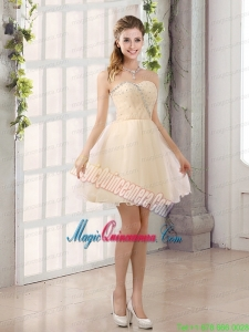 2015 Sturning Sweetheart A Line Mother of the Bride Dresses with Beading