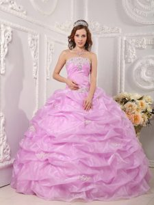 Rose Pink Organza Dresses for Quinceaneras with Appliques Pick ups