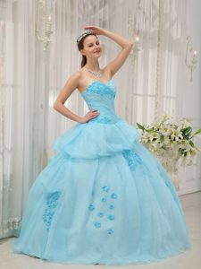 Light Blue Organza Dresses for A Quince with Appliques Pick ups
