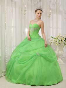 Appliqued Organza Spring Green Sweet Sixteen Quinceanera Dresses