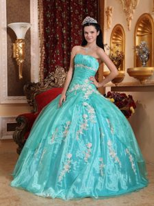 Appliques Accent Organza Quinceanera Gown Dresses in Apple Green