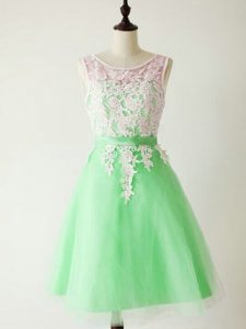 Knee Length A-line Sleeveless Apple Green Court Dresses for Sweet 16 Lace Up