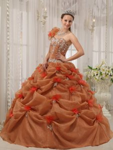 one Shoulder Rust Red Appliqued Quinceanera Dresses for Sale