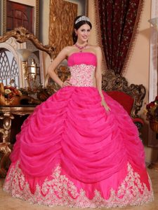 Popular Appliqued Hot Pink Sweet Sixteen Quinceanera Dress