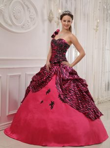 Pink One Shoulder Taffeta and Zebra Quinceanera Gown in Farnborough