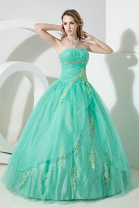 Turquoise Organza Appliques Sweet 16 Dresses in Newtownabbey