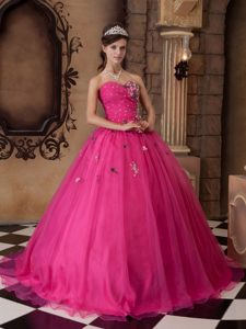 Organza Sweetheart Appliques Quinceanera Party Dresses with Beading