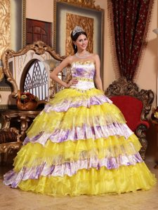 Multi-Color Beaded Sweetheart Ruffled La Quinceanera Dresses Organza