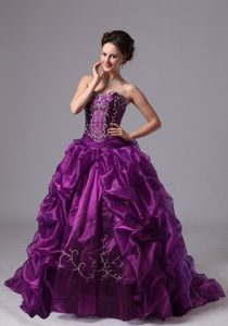 Pick ups and Embroidery Accent Purple Brush Quinceanera Gowns