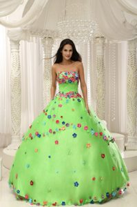 Spring Green Sweet 16 Dress with Multi-color Hand Made Flowers and Beading