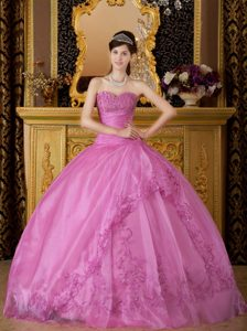 Embroidered Organza Sweetheart Rose Pink Quinceanera Gown Dress