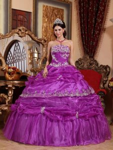 Popular Fuchsia Organza Quince Dresses with Appliques and Ruffles