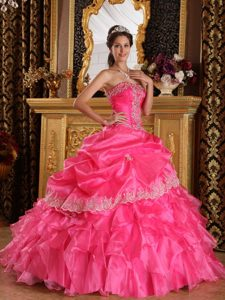 Appliques Accent Hot Pink Organza Sweet 15 Dresses of Floor Length