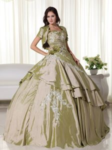 Appliqued Olive Green Quinceanera Gown in Belo Horizonte Brazil