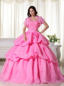 Hot Sale Rose Pink Appliqued Pick Ups Quinceanera Dress