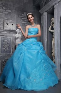 Baby Blue Lace-up Appliqued Sweet 15 Dresses for Wholesale