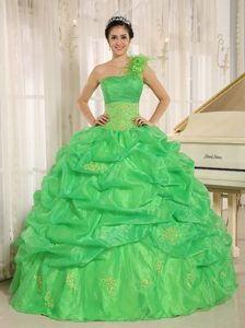 one Shoulder Pick Ups Spring Green Quinceanera Gown Dresses