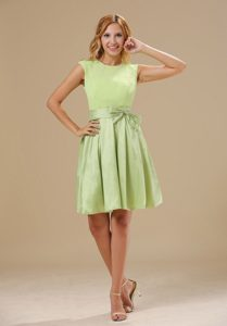 Yellow Green Scoop Chiffon Quinceanera Dama Dresses in Belfast