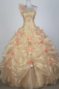 One Shoulder Pick-ups Beaded Appliques Champagne Quinceanera Dress