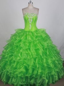 Spring Green Embroidery Organza Quinceanera Dresses with Ruffles