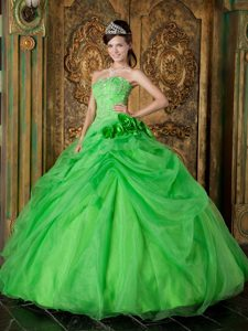 Flowers and Beading Accent Quinceanera Dresses in Spring Green