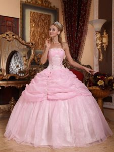 Pick ups and Appliques Accent Strapless Dresses for 15 in Baby Pink