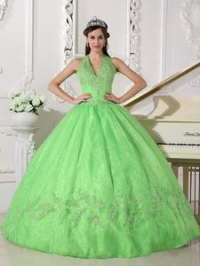 Spring Green Halter Lace-up Dresses 15 with Appliques Floor Length