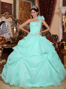 Ruffles and Appliques Accent One Shoulder Mint Colored Dresses 15