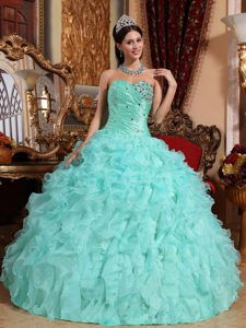 Beaded and Ruffled OrganzA Quinceanera Gown Dress of Floor Length