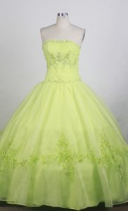 Green Floral Appliques Strapless Quinceanera Dress in Mendoza