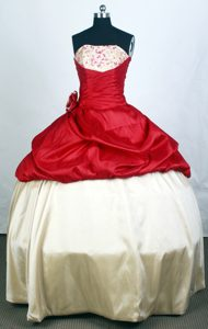 Two-toned 2013 Popular Quinceanera Gown with Hand Flower