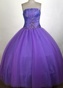 Simple Ruched Bodice 2013 Purple Quinceanera Gown in Alaska
