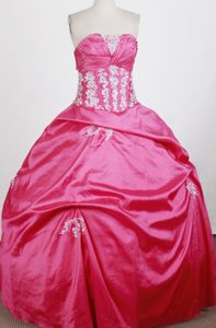 Ruched Bust Hot Pink with Appliques 2013 Sweet 16 Dress