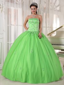 Monterrey Mexico Applique Spring Green Tulle Sweet 15 Dresses