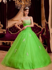 cfef5b401d3  692.78  218.69  Appliqued Strapless Quinceanera Dress in Spring Green for  Cheap