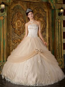 Champagne Tulle Strapless Quinceanera Gown Dress with Appliques
